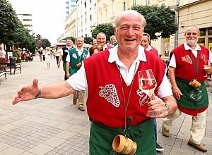 Megkezdődtek a Győri Bornapok – Fotók!